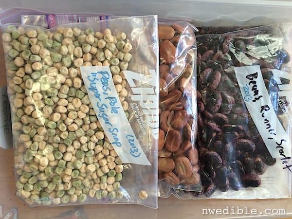 seed_storage_5
