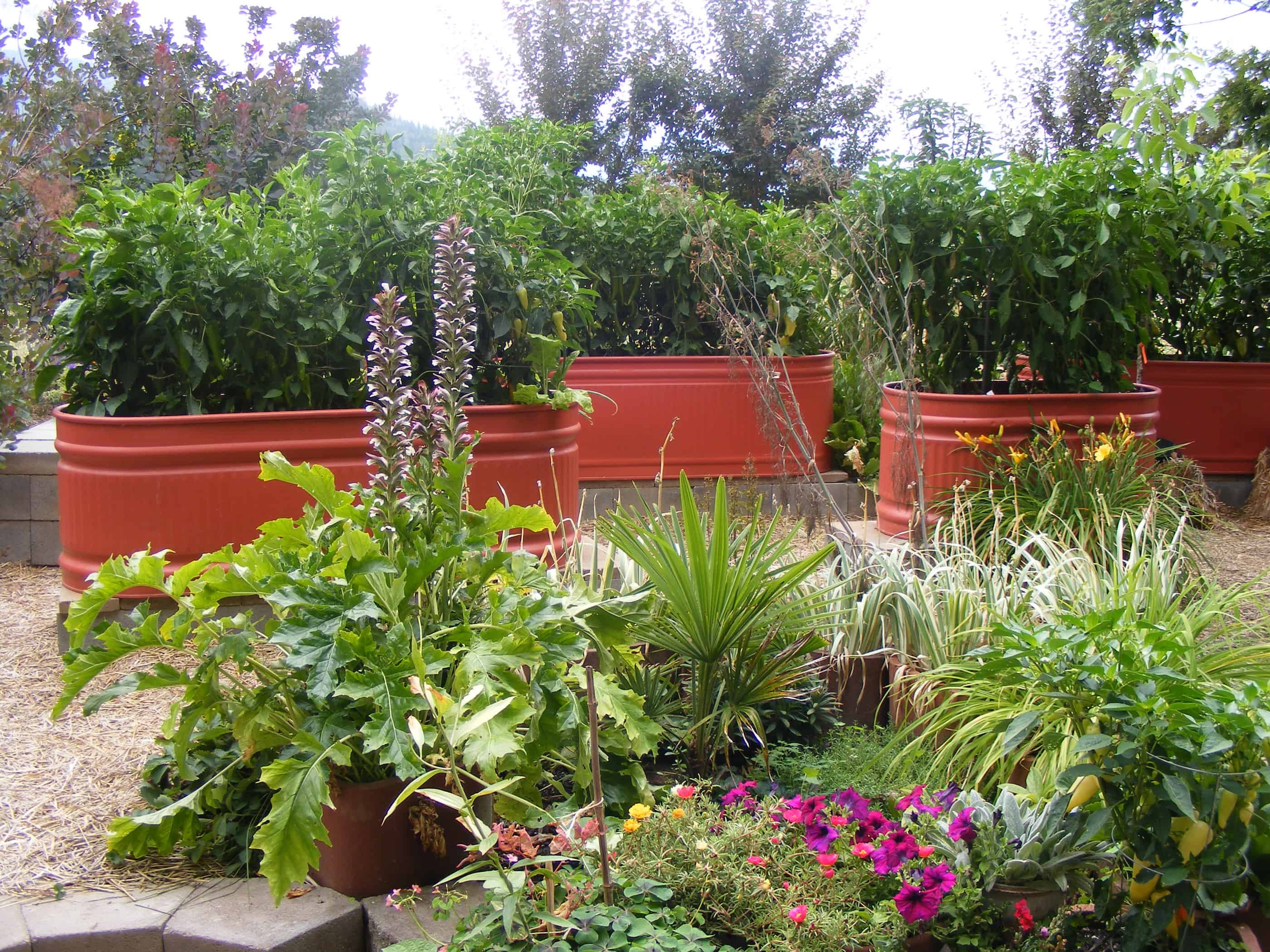 Is This The Most Attractive Veggie Garden Ever