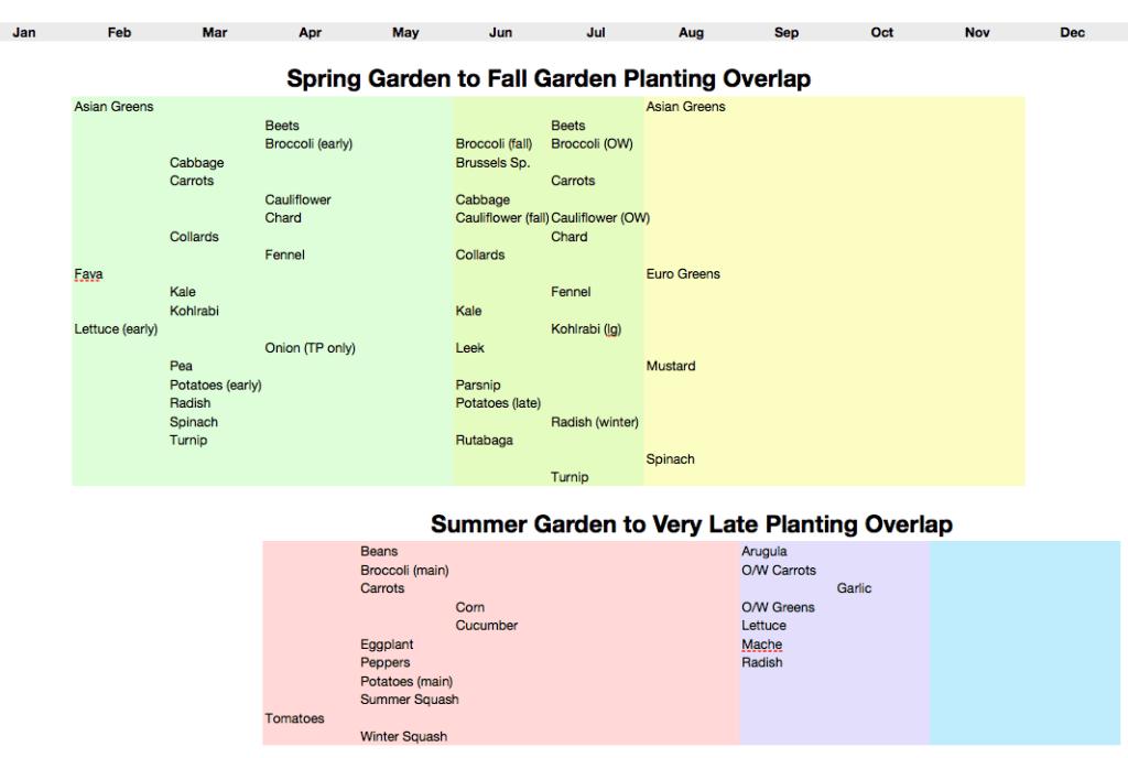 Garden Succession Planting
