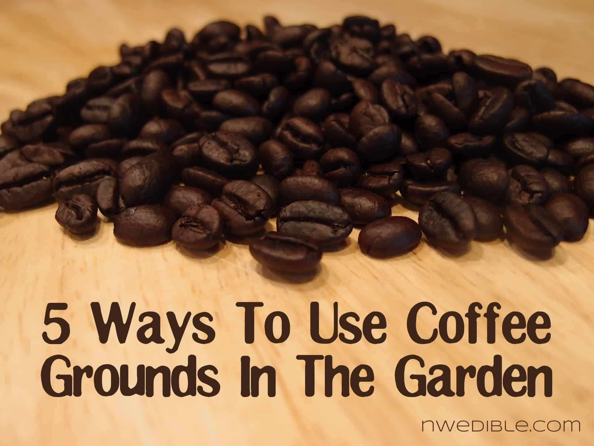 Throwing a children s book themed baby shower - How to use coffee grounds in garden ...