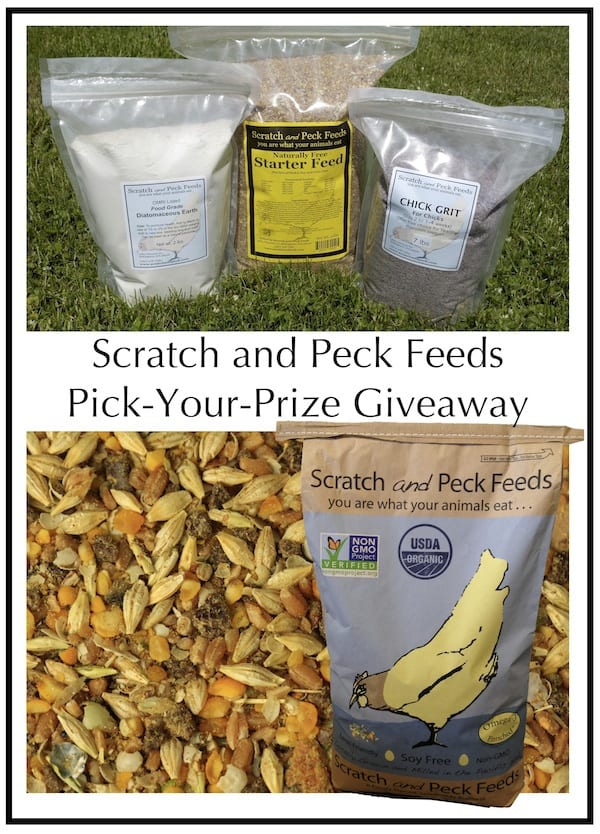 Scratch and Peck Feed Giveaway