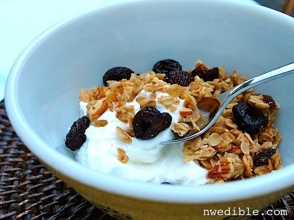 Yogurt with Granola