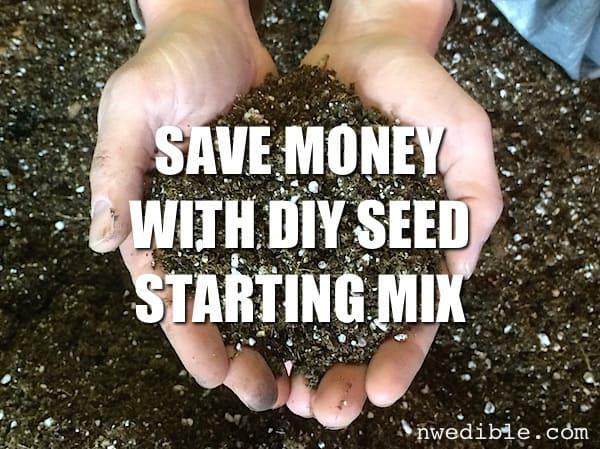 DIY Seed Starting Mix