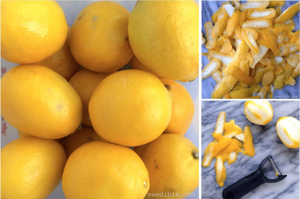 Lemon Peel DIY.40.19 AM