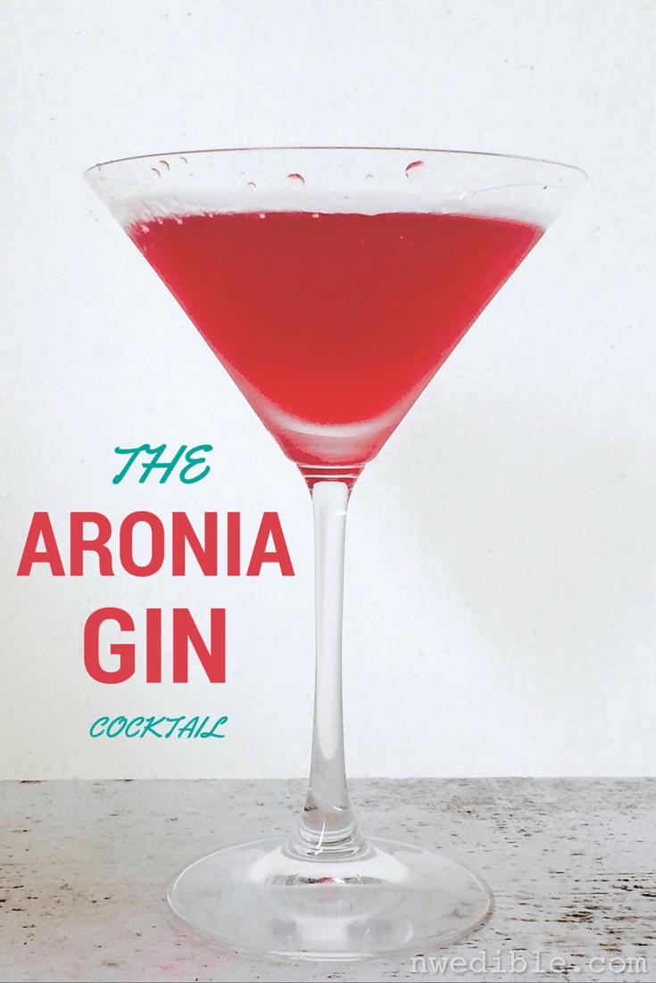 AroniaGinCocktail
