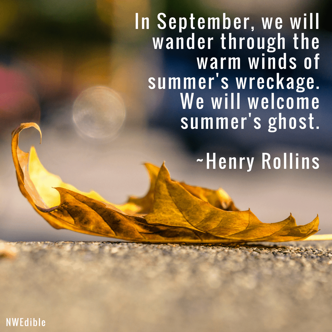 In September, we will wander through the warm winds of summer's wreckage. We will welcome summer's ghost. Henry Rollins