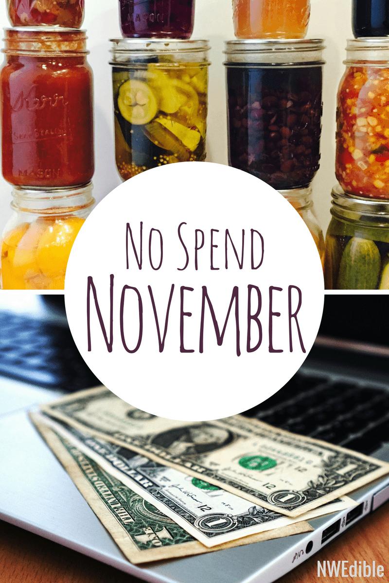 No Spend November 2017