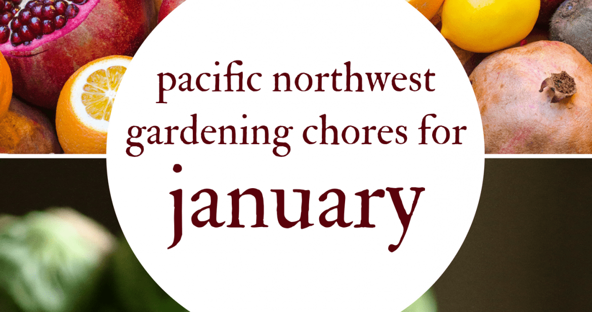 January Gardening Chores For The Pacific Northwest