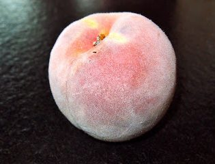 Lazy Preservation At Its Best: Freezing Peaches