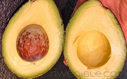 Never Buy A Rotten Avocado Again