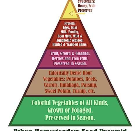 The Urban Homesteader Food Pyramid