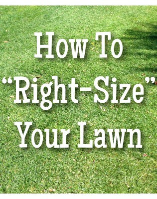 How To Right-Size Your Lawn: In Defense Of (A Little) Turf