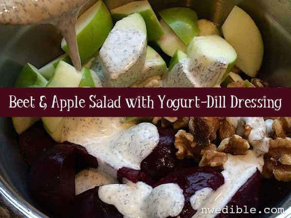 Beet Apple Salad with Yogurt Dill Dressing