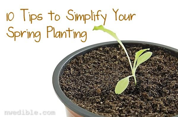Simplify Spring Planting