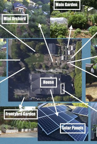 Homestead Collage: An Overview of My Garden