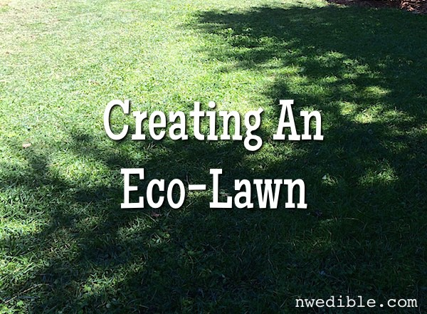 Eco_Lawn_2