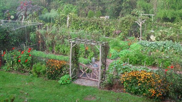 Lee Reich's Garden