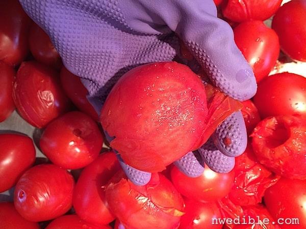 peel_tomatoes_fast_6