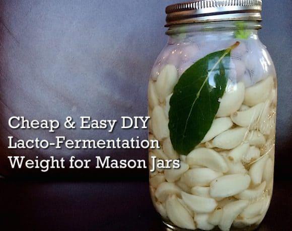 DIY Lacto-Fermentation Weight for Mason Jars