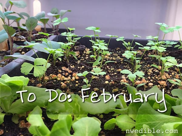 To-Do-Feb