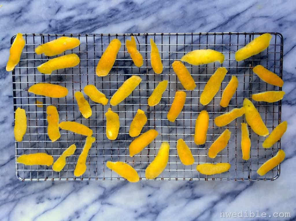 Lemon Peel DIY9868