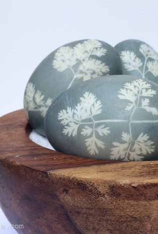 Sunprint Naturally Dyed Easter Eggs in 5 Easy Steps