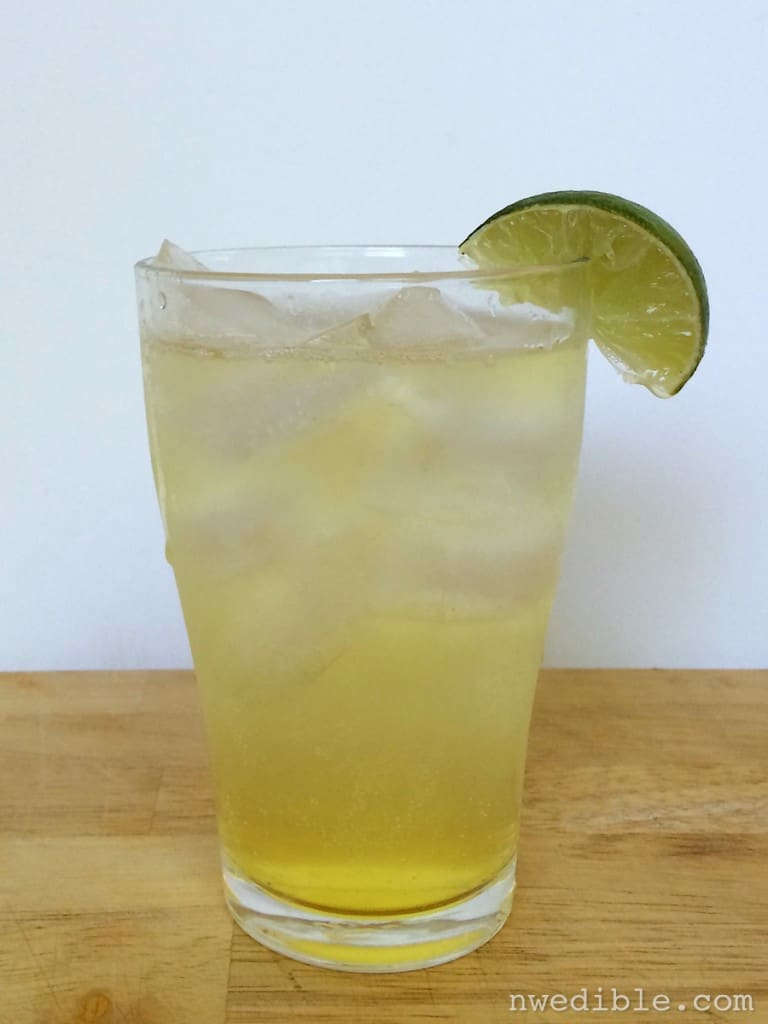 DIY Tonic Water53