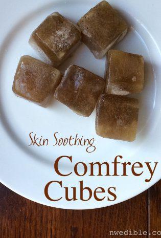 DIY Sunburn Soothing Comfrey Cubes