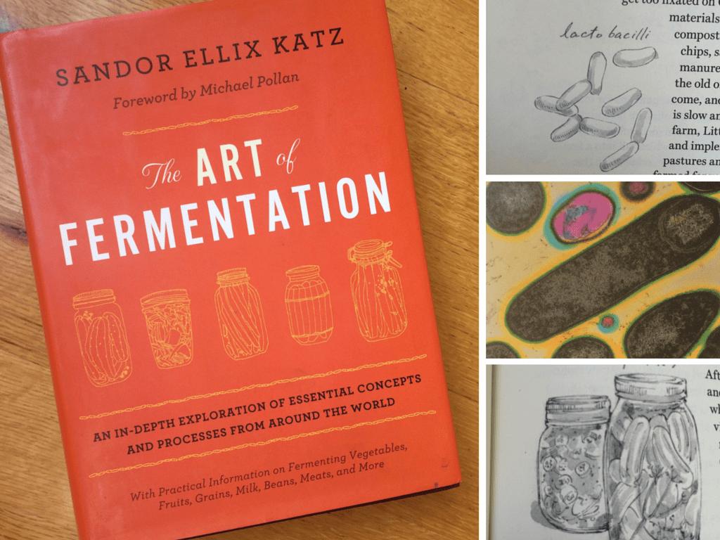 Art-Fermentation-Katz