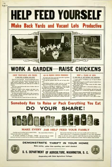 backyard-chickens-1917-e1374777111449