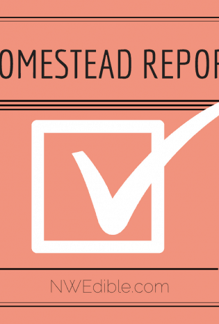 Productive Home Weekly Report: 8/26/17