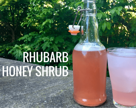Rhubarb Honey Shrub (A Sweet Tart Drinking Vinegar)