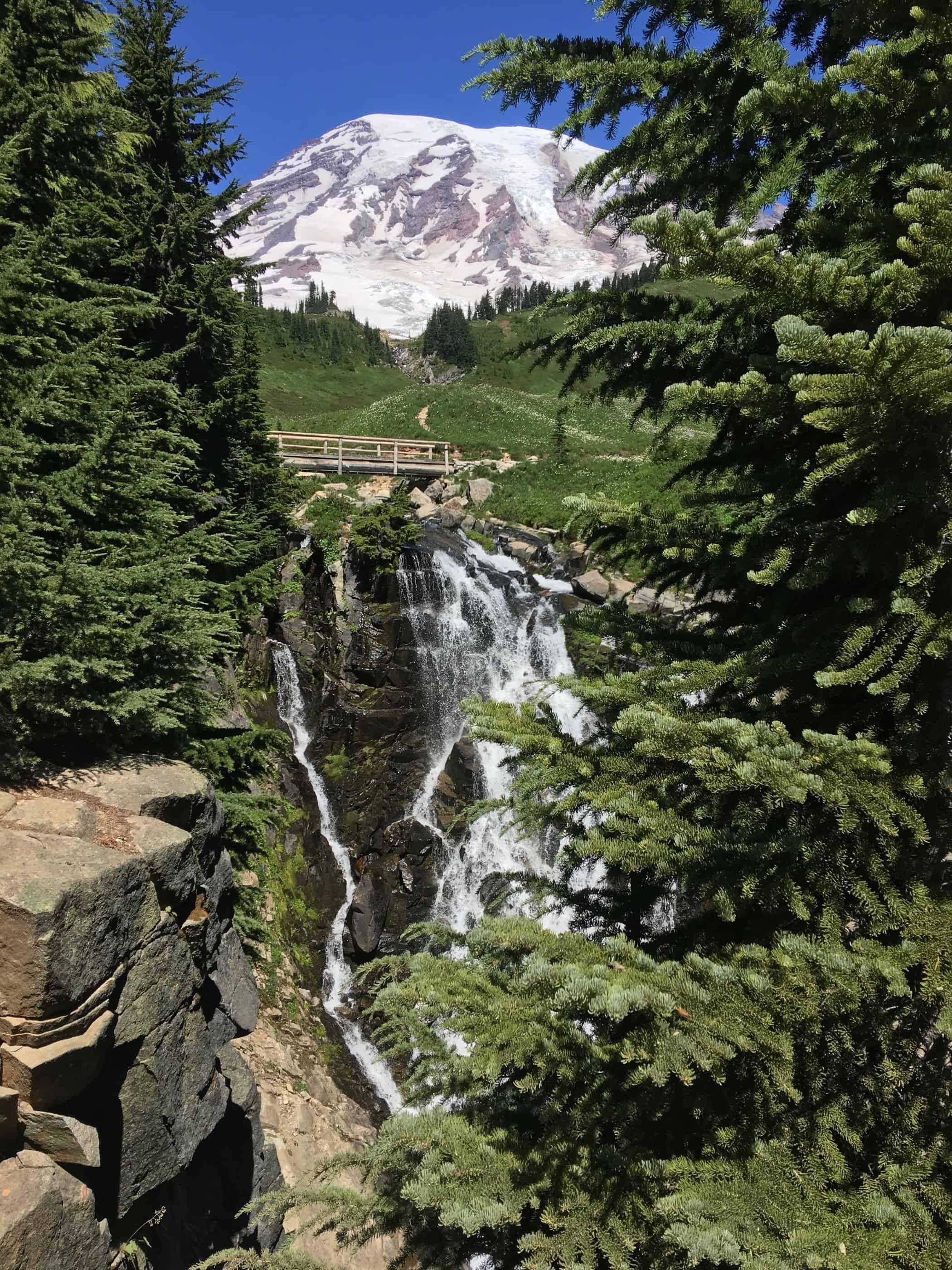 Mt Rainier Camping