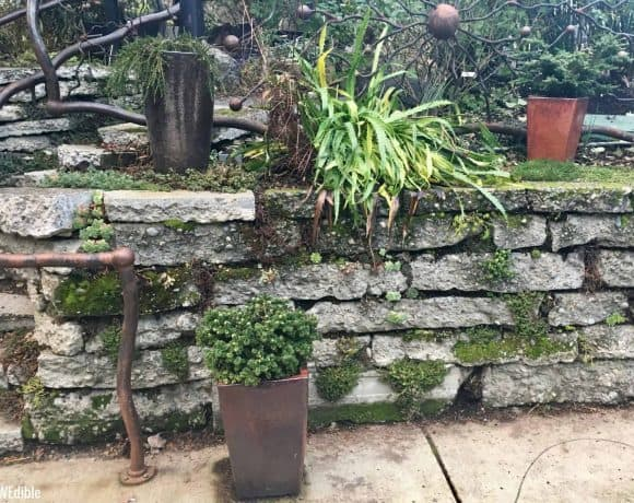 Urbanite (Broken Concrete) Retaining Wall As A Garden Feature