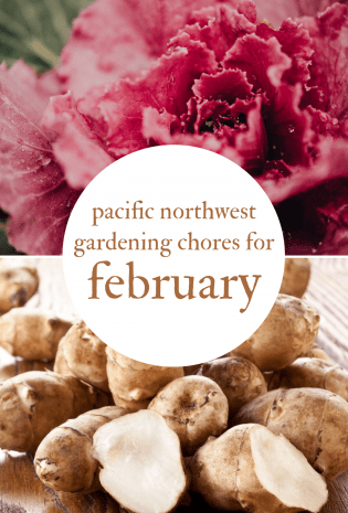 February Gardening Chores For The Pacific Northwest