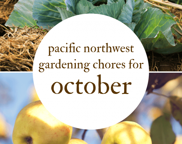 October Gardening Chores For The Pacific Northwest