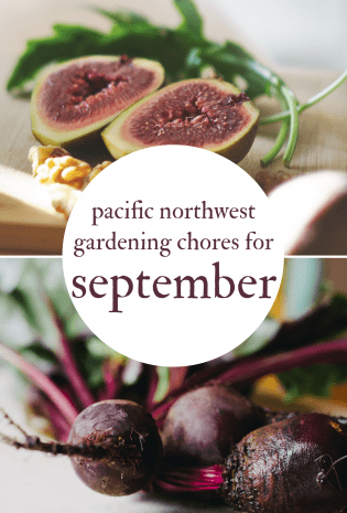 September Gardening Chores For The Pacific Northwest