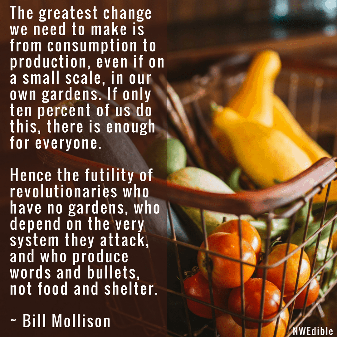 Bill Mollison The greatest change we need to make is from consumption to production